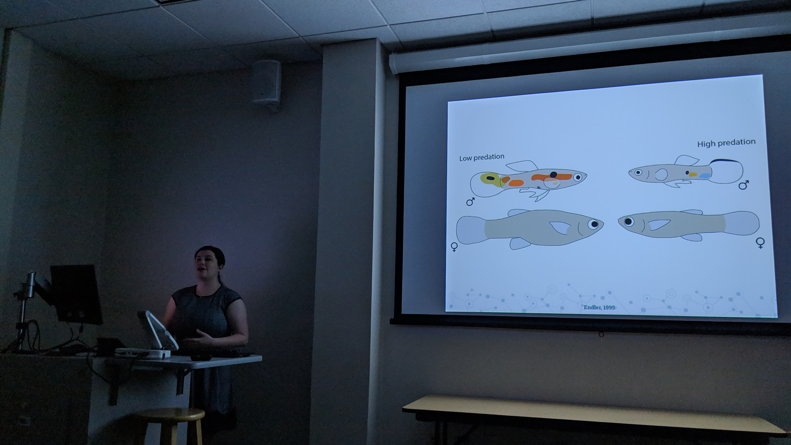 Lydia defends Honors thesis