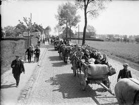 Belgian Refugges 1940.jpg