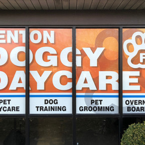 Fenton Doggy Daycare