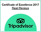 2017 Certificate of Excellence.png