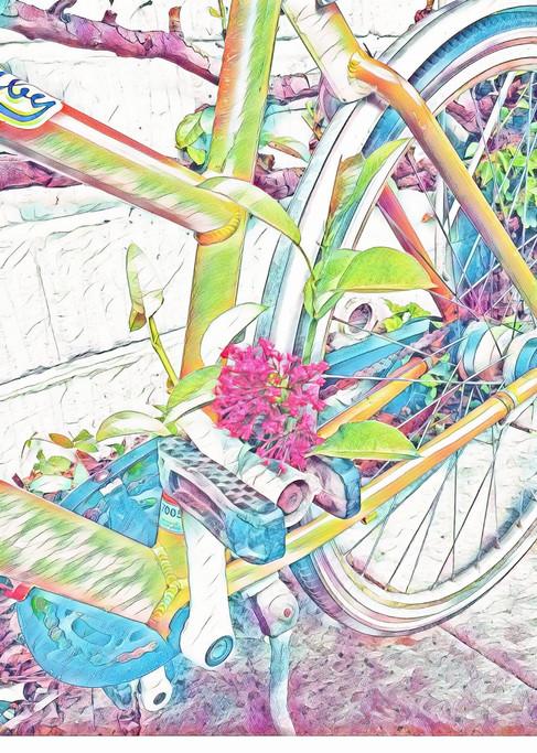 cykel med blomst