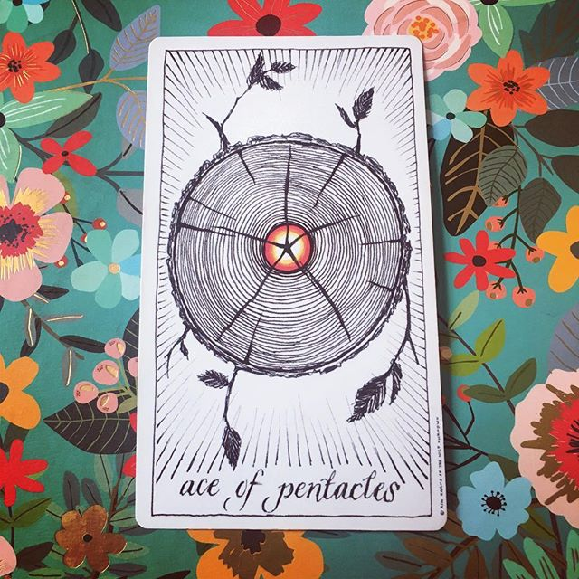 Ace of Pentacles _ make fresh new spring things #cardoftheday #songwriting
