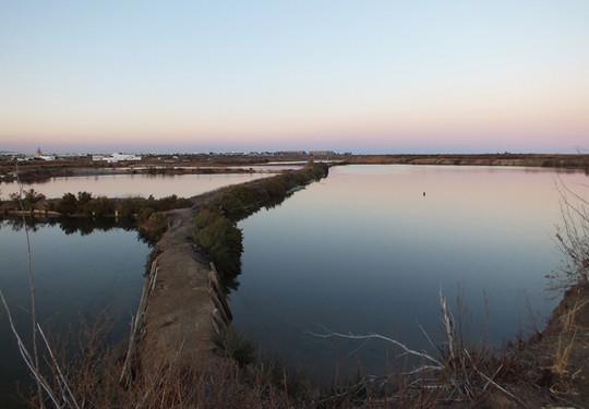 Salinas do Grelha, Algarve - Olhão, Ria Formosa