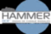 Logo hammer.png
