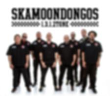 Skamoondongos_2018.png