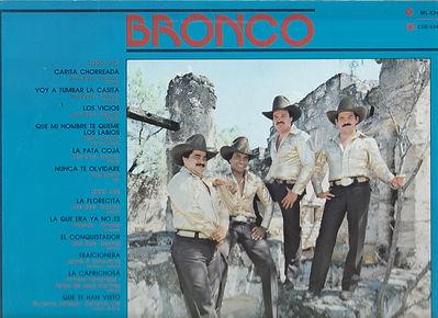 BRONCO back Top.jpg
