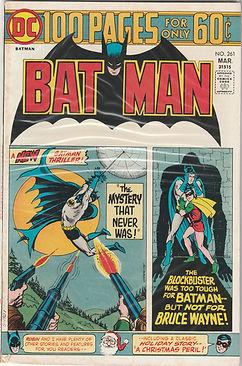 BAT #261 100 (2).jpg