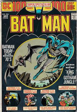 BAT #254 100 (2).jpg