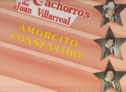 CACHORROS LOW.jpg