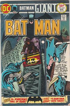 BAT #262 (2).jpg