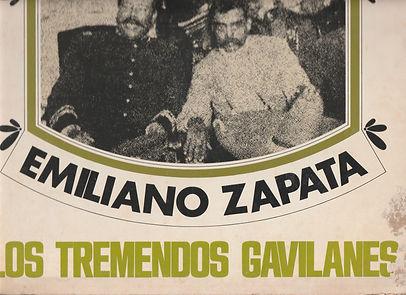 GAVILANES LOW.jpg