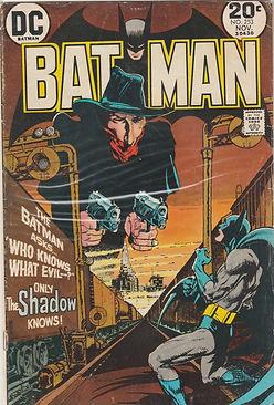 BAT #253 (2).jpg