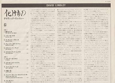 DAVID INSERT (2).jpg
