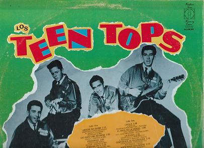 TTops back Top used.jpg