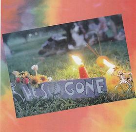Dead Chicago 1995 inside cover.jpg