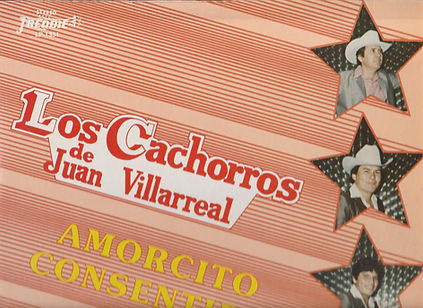 CACHORROS Top.jpg