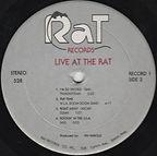 RAT B (2).jpg