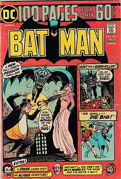 BAT #257 100 (2).jpg