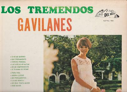 GAVILANES Top.jpg