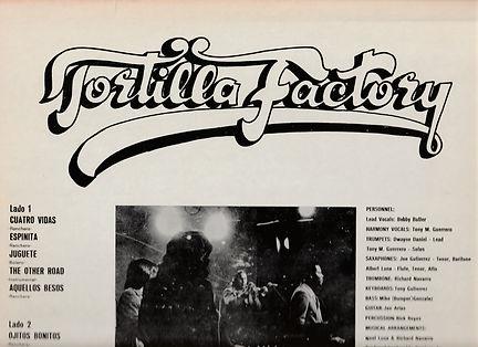 TORTILLA back Top.jpg