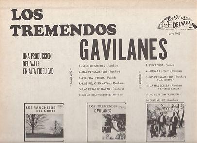 GAVILANES back Top.jpg