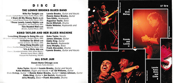 BLUES Booklet D (2).jpg