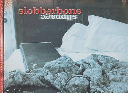 SLOBBERBONE Top.jpg