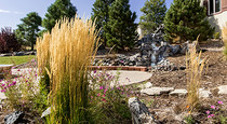 Castle Rock Gardens