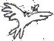 Bird 3 transparent.png