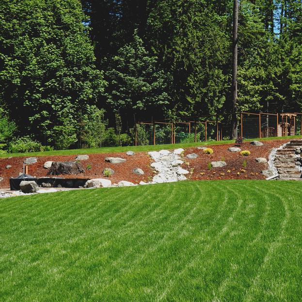 Website Update Lawn Program 9.jpg