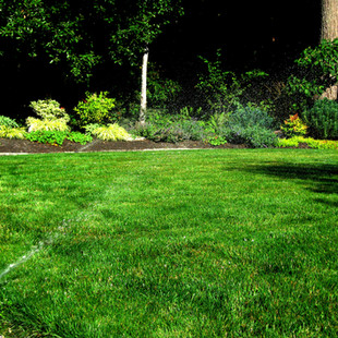 Website Update Irrigation Maintenance 6.