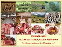 seminario carne.PNG