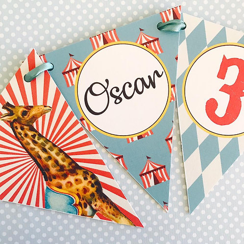 Circus Party Bunting