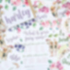 Flower Fairy party order.jpg