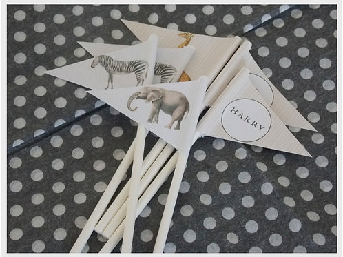 Vintage Safari Mini Flags