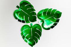 Tropical Leaf trays