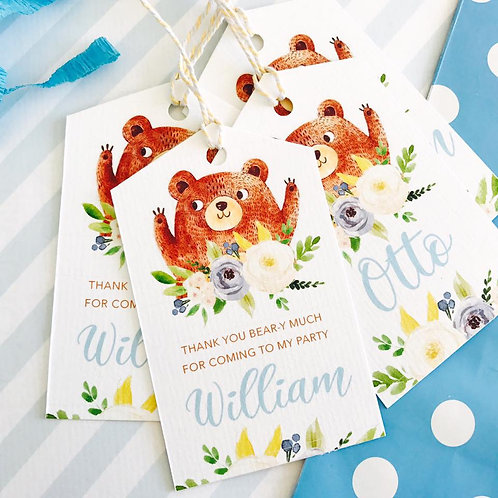 Teddy Bears Picnic Party Bags (boy)