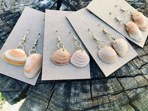 Tournesol's Sea Shell Earrings