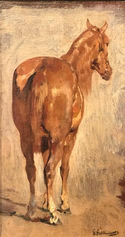 Guillaumet etude de cheval
