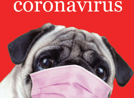 Antología: Cuentos del coronavirus ( Ediciones Irreverentes)