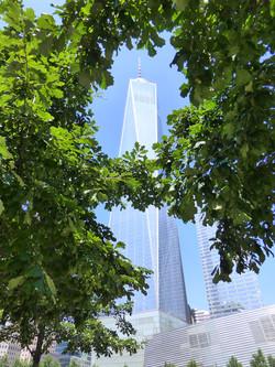 World Trade Center N.Y.C.