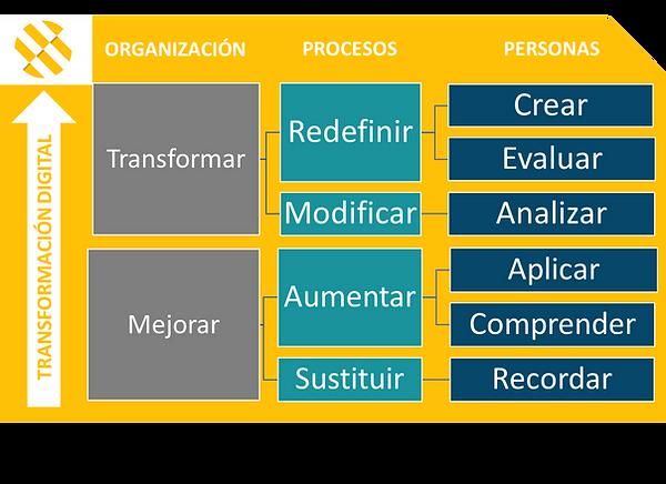 transformacion de organizacion, procesos