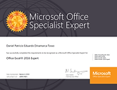 DIPLOMA EXCEL EXPERT 2016.PNG