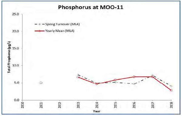 2018 Phosphorus.JPG