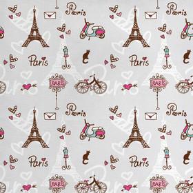 Blue Paris Fabric.jpg
