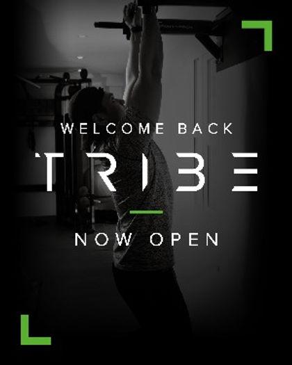 Tribe_Lauch_SocialMediaPosts_v12_edited.