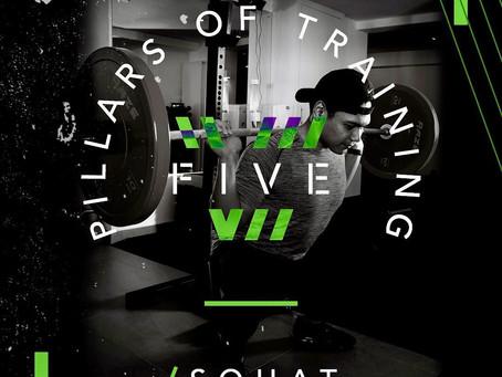 5 Pillars of Training - Pillar 1: Squat