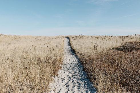 prairie-1246633_1920.jpg