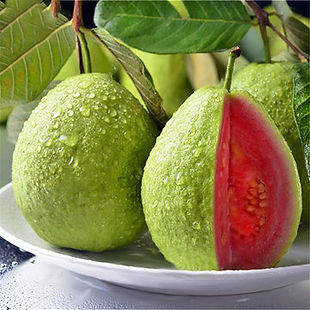 Egrow 30 Pcs/Pack Guava Seeds Tropical Sweet Fruit Tree Plants Seed for Garden Balcony Courtyard - RM12.20