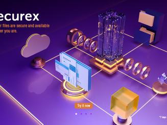 Securex Web design